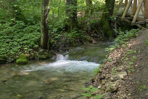 Szalajka Valley, Stream, Water, Nature, Flow, Outdoor