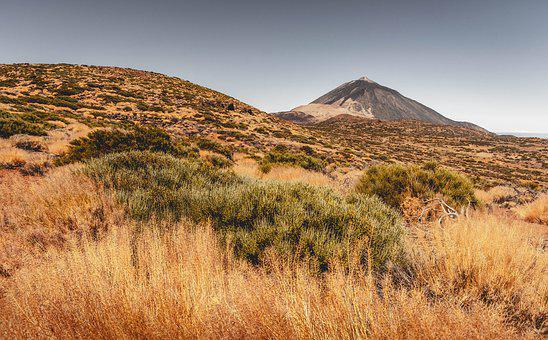 Teide, Grass, Mountain, Nature, Landscape, Mountains