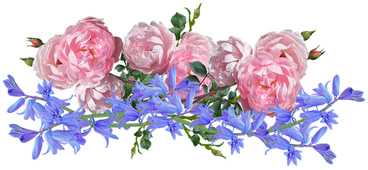 Flowers, Roses, Bluebells, Arrangement, Garden, Nature