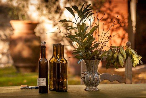 Yard, Vine, Gardening, Vineyard, Decorative, Summer