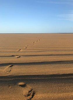 Beach, Footprints, Sand, Sun, Light, Ridges, Lines, Sea
