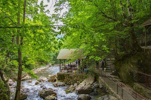 Nature, Waterfall, Turkey, Landscape, Dd, River, Forest