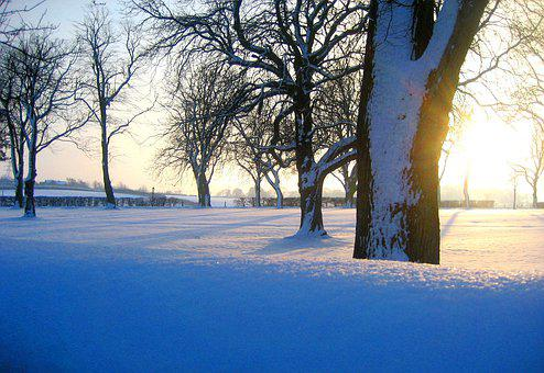 Winter, Walk, Yorkshire, Cold, Landscape, Outdoors