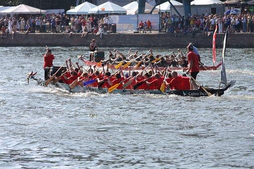 Dragon Boat, Dragon Boating, Paddle, Water Sports