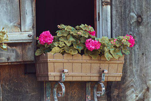 Flower Box, Floral Decorations, Window, Log Cabin