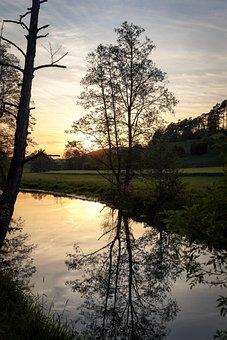 Tree, Meadow, Sun, Mood, Romantic, Mirroring