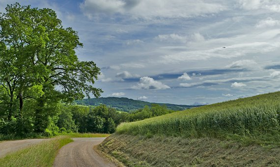 Landscape, Nature, Field, Agriculture, Away, Trees