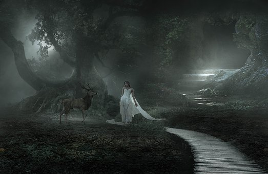 Fantasy, Woman, Fairy Tales, Forest, Composing