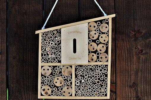Insect Hotel, Wooden Box, Insect House