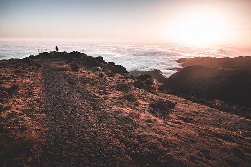 Madeira, Portugal, Lissabon, Island, Atlantic, Nature