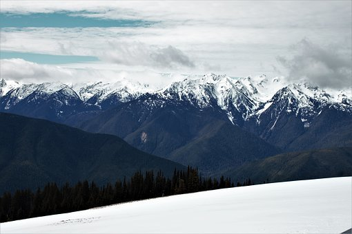 Hurricane Ridge, Washington, Pacific, Northwest, Snow