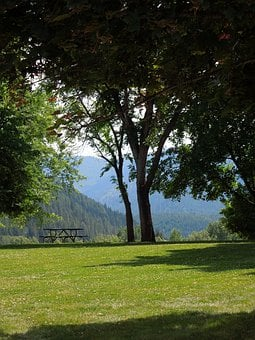 Nature, Park, Trees, Outdoors, Scenic, Mountains