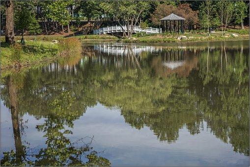 Atlanta, Park, Georgia, Landscape, Water, Travel