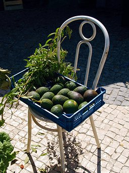 Chair, Vegetable, Nature, Ecology, Vegetables, Avocado