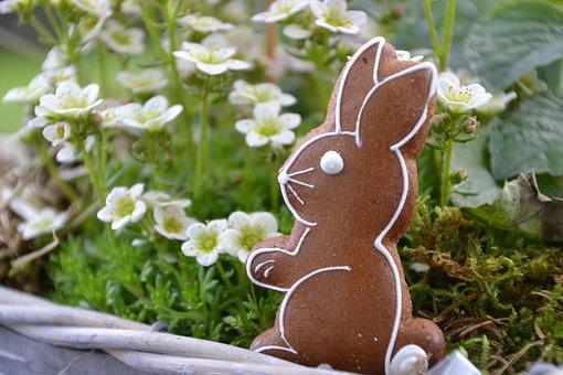 Rabbit Ears, Hare, Easter, Easter Bunny, Ears, Cute