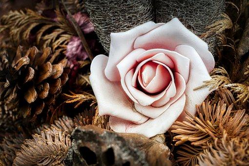 Flower, Decoration, Mourning, Love, Nature, Harmony
