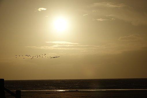 Spo, Sunset, Schleswig, Sky, Cloud, Sun, Sea, Ebb