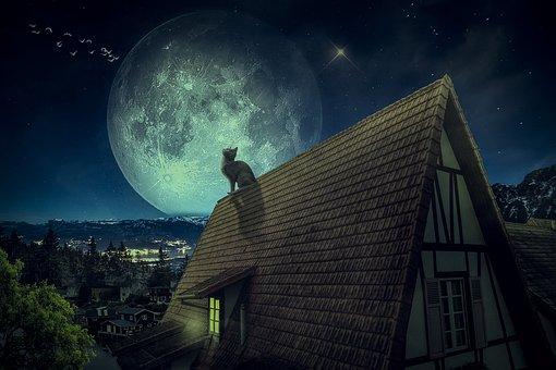 Manipulation, Roof, Village, Cat, Full Moon, Stars