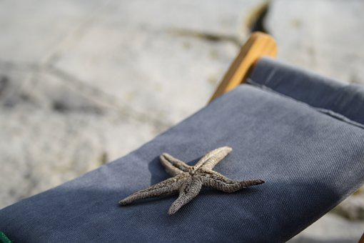 Starfish, Sea, Beach, Summer, Star, Blue, Chairs