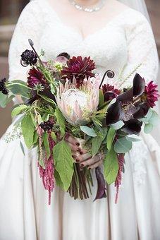 Bouquet, Flowers, Wedding, Bride, Burgundy, Flora