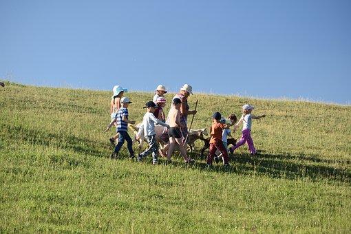 Childhood, Camping, Kids, Grandma, Goat, Goats, Slope