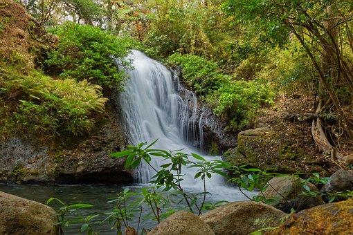 Waterfall, Costa Rica, Water, Rainforest, Tropical