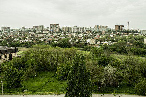 Landscape, The Urban Landscape, Trees, At Home, City