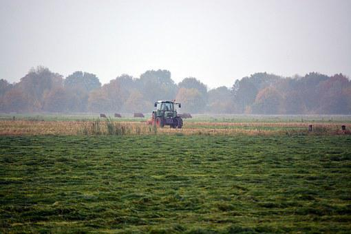 Tractors, Harvest, Agriculture, Meadow, Landscape