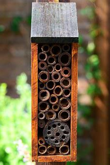 Insect House, Bee Hotel, Solitary Bees