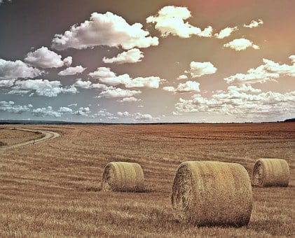 Field, Straw Bales, Agriculture, Landscape, Hay, Straw
