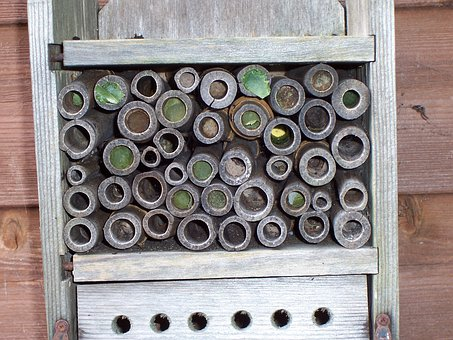 Insect House, Leaf-cutter Bees, Mason Bees, Leaf