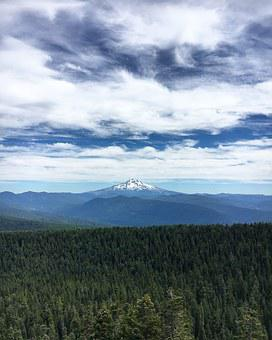Mountain, Oregon, Forest, Mt Hood, Sherrards Point