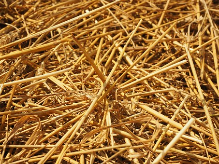 Straw, Straws, Field, Nature, Agriculture, Harvest