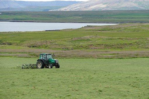 Iceland, Landscape, Nature, Water, Sea, Atlantic