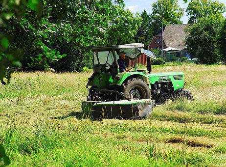 Hay, Mow, Rural, Agriculture, Cattle Feed, Summer