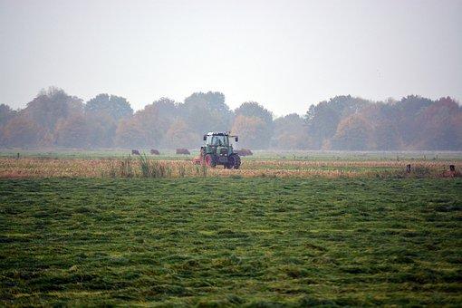 Tractors, Harvest, Agriculture, Meadow, Landscape