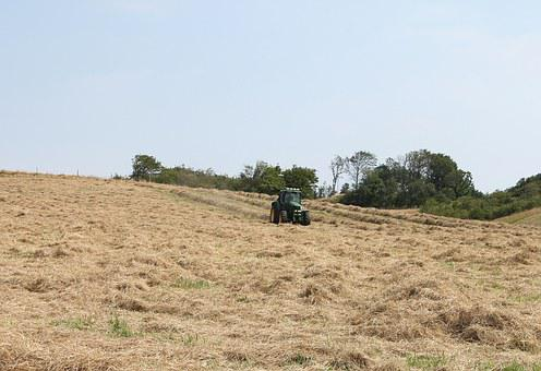Tractor, Work, Agriculture, Harvest, Machines, Vehicle