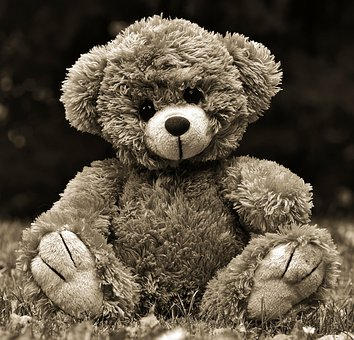 Teddy, Teddy Bear, Toys, Cute, Stuffed Animal, Bear