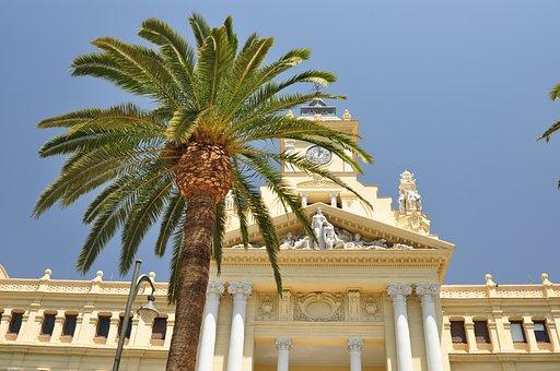 Palm, Malaga, Architecture, Tourism, Paradise