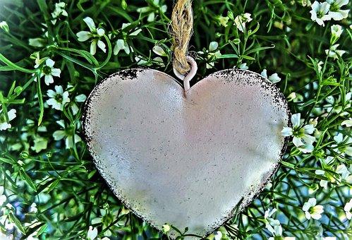 Heart, White Flowers, Thriving Ziergras, Plant, Summer