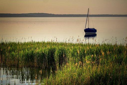 Lake, Sunset, Reed, Backlighting, Water, Nature, Still