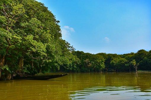 Sylhet, Ratargul, Bangladesh, Water, River, Africa