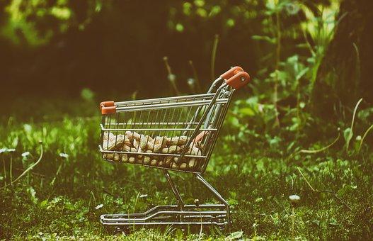 Shopping Cart, Peanuts, Food, Animals, Meadow, Garden