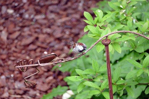 Mus, Homester, Bird, Flora, Frog, Metal, Rust, Ornament