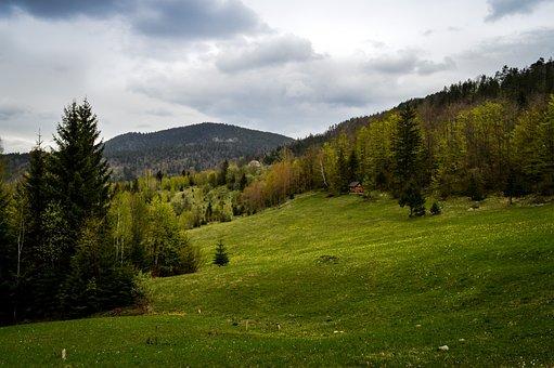 Serbia, Tara, Mountain, Landscape, Nature, Cloud