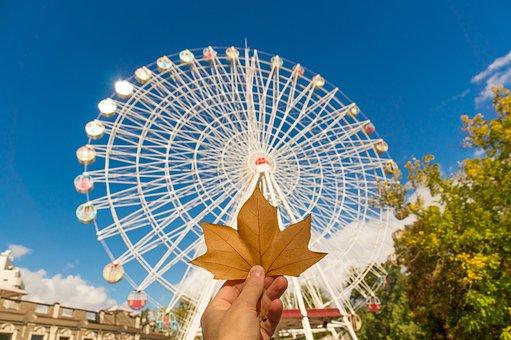 Autumn, Fall, Colorful, Mood, Leaf, Atmospheric, Color