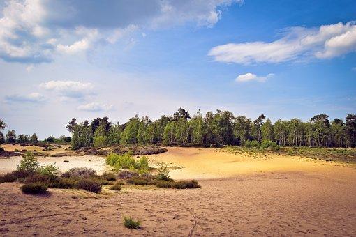 Landscape, Dunes, Shifting Sand Dunes, River Dunes