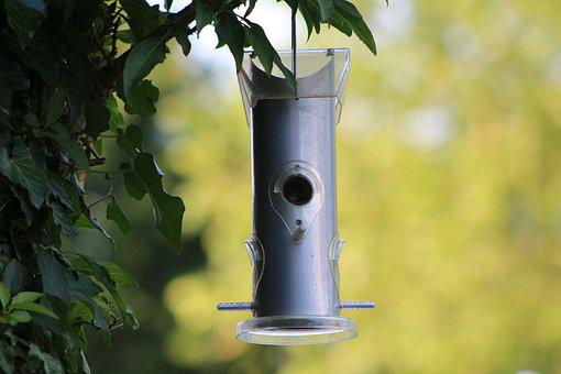 Aviary, Bird, Feeding, Nature, Garden, Feeding Place