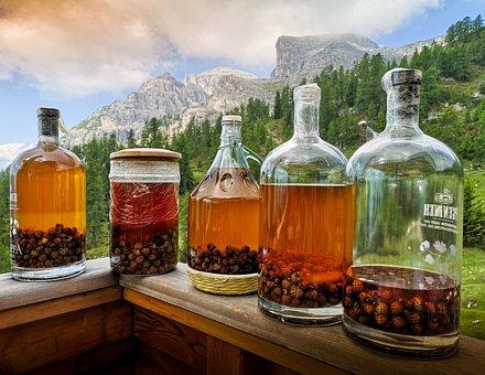 Grappa, Bottles, Liquor, Distillate, Mugo Pine