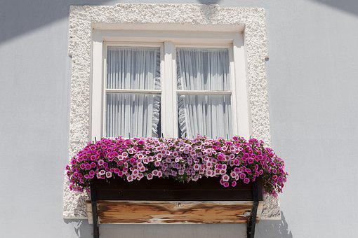 Window, House, Old, Floral Decorations, Architecture